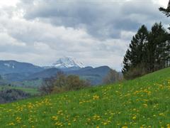 Wirtschaft im Pielachtal, Rabenstein an der Pielach